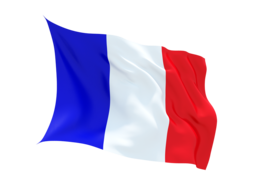 France Virtual Number ,unlimited minutes to VOIP ,Asterisk