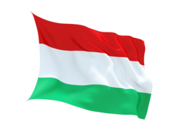 Hungary Virtual Number ,unlimited minutes to VOIP ,Asterisk