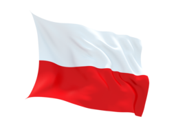 Poland Virtual Number ,unlimited minutes to VOIP ,Asterisk