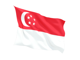 Singapore Virtual Number ,unlimited minutes to VOIP ,Asterisk